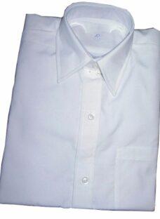 http://articulo.mercadolibre.com.ar/MLA-605188723-camisa-colegial-batista-blanca-_JM