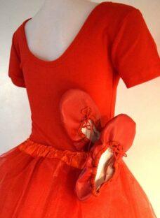 http://articulo.mercadolibre.com.ar/MLA-612628741-malla-tutu-badanas-danza-ballet-mangas-cortas-colores-_JM