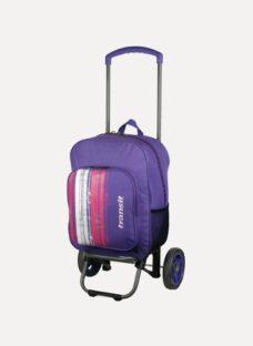 http://articulo.mercadolibre.com.ar/MLA-614577796-mochila-con-carro-transit-gremond-economica-tikal-belgrano-_JM