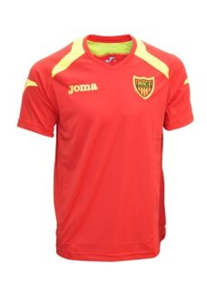 http://articulo.mercadolibre.com.ar/MLA-607023777-remera-joma-champion-boca-unidos-entrenamiento-poliester-_JM