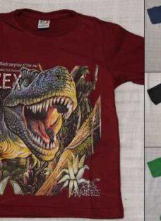 http://articulo.mercadolibre.com.ar/MLA-631613683-remeras-dinosaurios-ninos-talle-2-al-16-_JM
