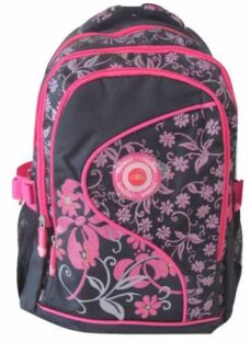 http://articulo.mercadolibre.com.ar/MLA-606695864-mochila-infantil-con-brillos-y-relieve-escolar-_JM