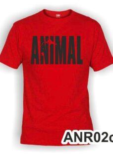 http://articulo.mercadolibre.com.ar/MLA-619559425-remeras-golds-gym-animal-algodon-peinado-241-excelcalidad-_JM