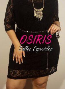 http://articulo.mercadolibre.com.ar/MLA-613031122-vestido-fiesta-talle-especial-grande-_JM