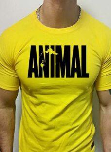 Remeras Animal Gym Pack Algodón Premium Únicas En El País!!